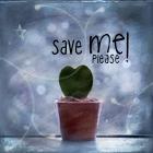 Random image: save_me