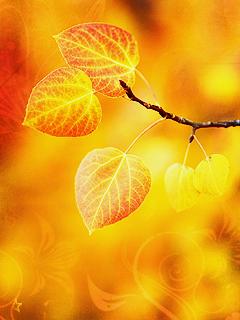 красивые анимированные темы с осенью на нокиа х2-00