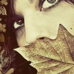 Random image: fall5