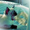 Random image: зверушки-13-йошкин-кот)