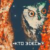Random image: зверушки3-сова