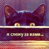 Random image: зверята-12-я-слежу-за-вами)