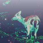 Random image: сумерки-олененок