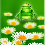 Random image: Лягушка