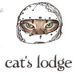 Random image: cat